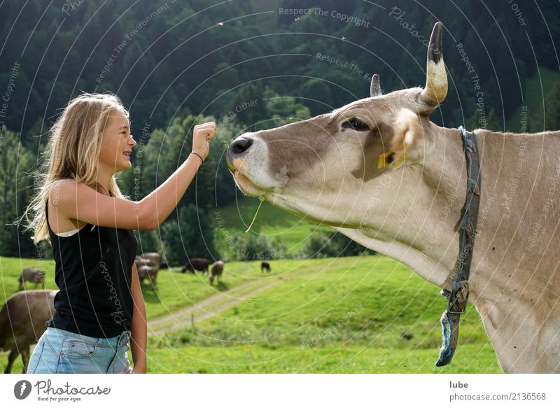 Cowgirl Matilda 2 Agriculture Forestry Child Girl Infancy Youth (Young adults) 1 Human being 8 - 13 years Environment Nature Landscape Alps Blonde Animal Pet