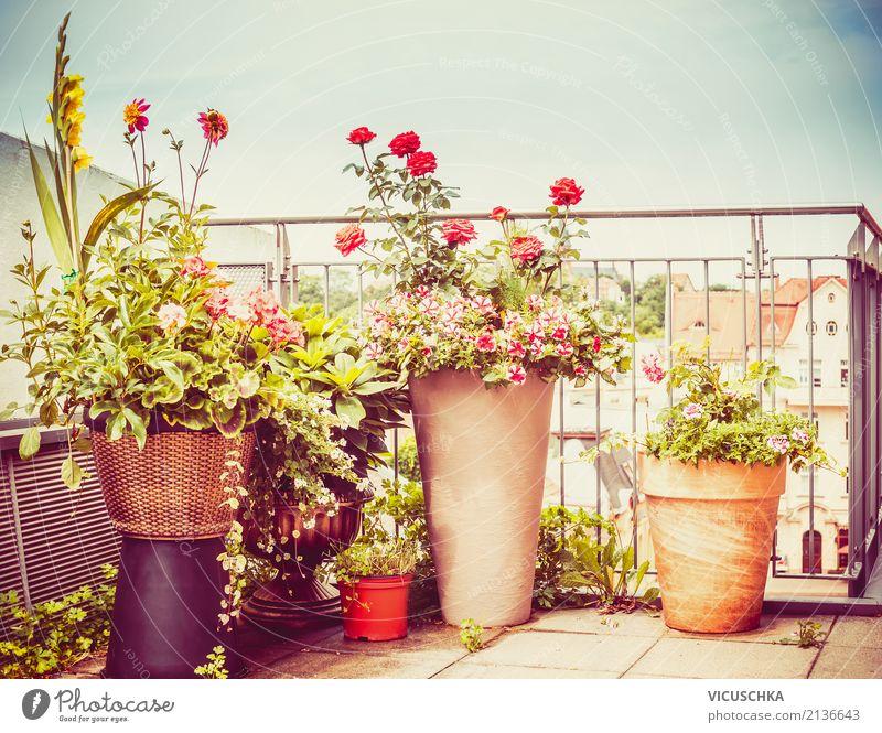 Flower pots on terrace or balcony Lifestyle Style Design Summer Living or residing Flat (apartment) Garden Interior design Nature Autumn Plant Pot plant Town