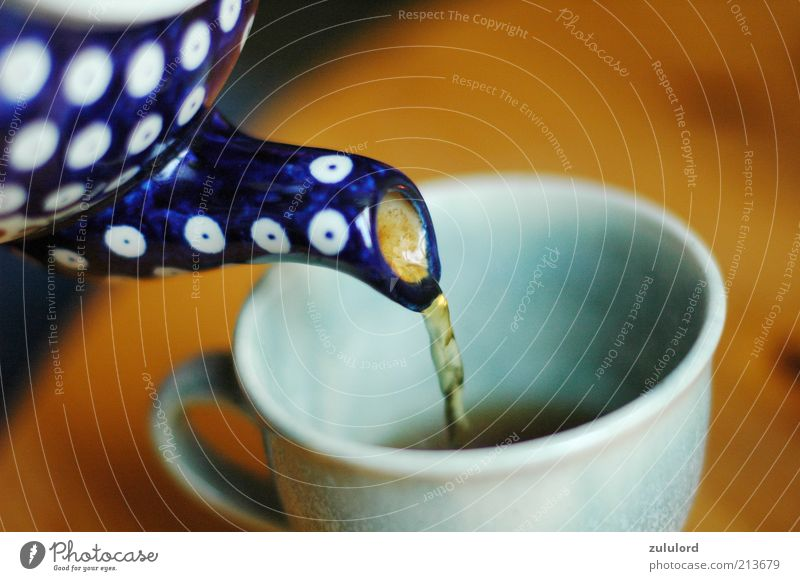 temporise Beverage Drinking Hot drink Tea Crockery Cup Healthy Wellness Harmonious Well-being Fill Teapot Jug Warmth Cozy Black tea Tasty Tea cup Teatime
