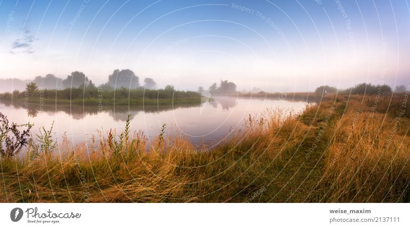 Foggy river in the morning. Panorama. Warm summer morning Sky Nature Vacation & Travel Blue Summer Green Water Tree Landscape Far-off places Beach Forest Yellow