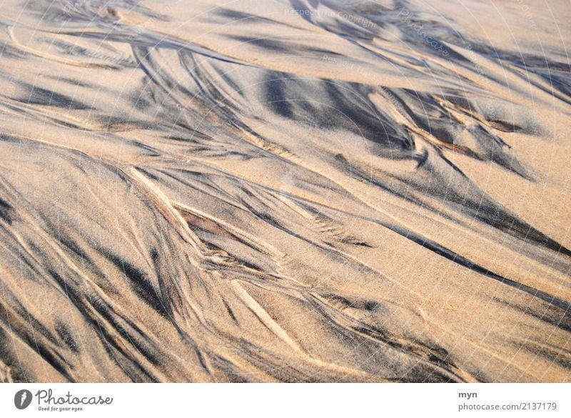 Patterns in the sand Vacation & Travel Tourism Adventure Far-off places Summer Summer vacation Sunbathing Beach Ocean Environment Nature Landscape Elements