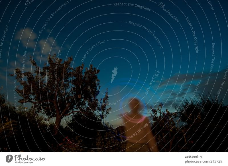Quiet flashing with the mobile phone Playing Lamp Man Adults Nature Landscape Sky Night sky Garden August Visual spectacle Dark Long exposure Circle Round