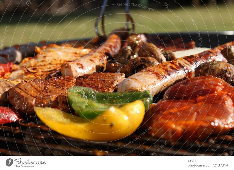 Summer Food Brown Nutrition To enjoy Fire Herbs and spices Delicious Vegetable Barbecue (event) Appetite Meat Dinner Barbecue (apparatus) Sausage Pepper