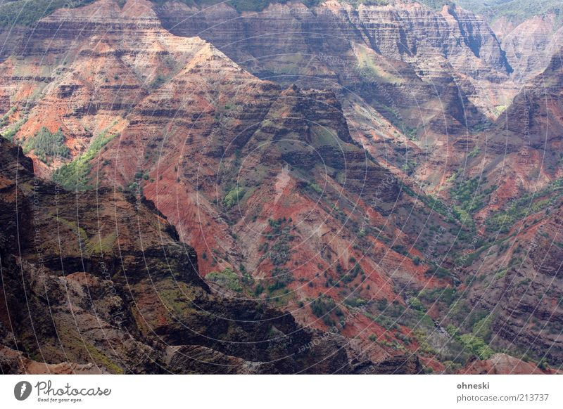 Waimea Canyon without sky Environment Nature Landscape Elements Earth Hill Rock Gigantic Colour photo Exterior shot Contrast Deserted Travel photography