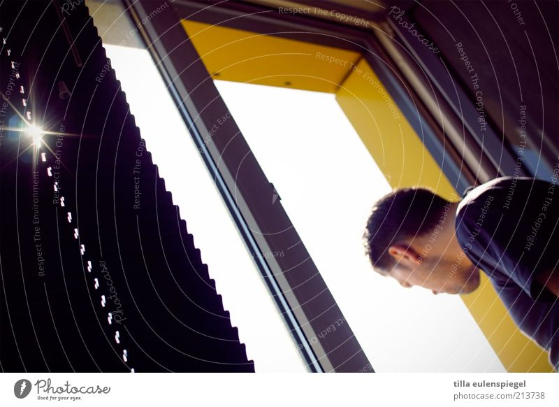 What are you...? Flat (apartment) Masculine Man Adults 1 Human being Window Observe Looking Curiosity Interest Discover Living or residing Venetian blinds