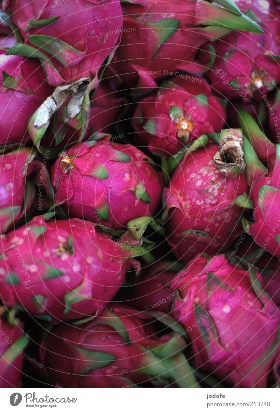 Pitahaya Food Fruit Exotic Violet Pink Dragonfruit Many Multiple Multicoloured Gaudy Colour photo Exterior shot Deserted Day Light Shadow Shallow depth of field