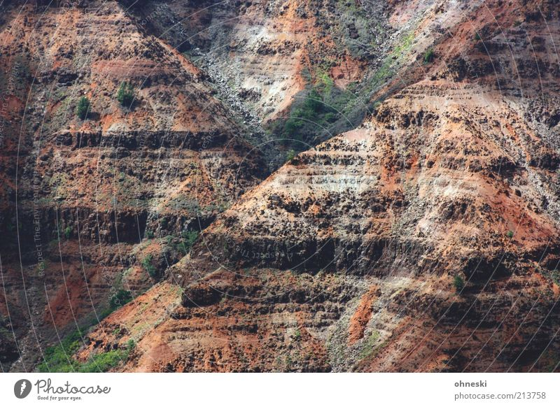 Y Landscape Elements Earth Rock Canyon Waimea Canyon Nature Primordial Colour photo Exterior shot Red Brown
