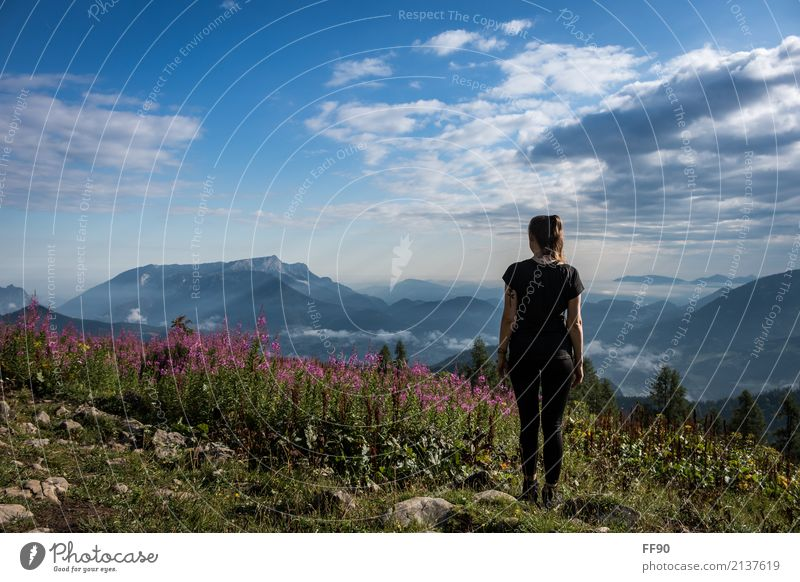 Just switch off... Style Hiking Feminine Young woman Youth (Young adults) Environment Nature Landscape Clouds Sun Sunlight Summer Beautiful weather Plant Flower
