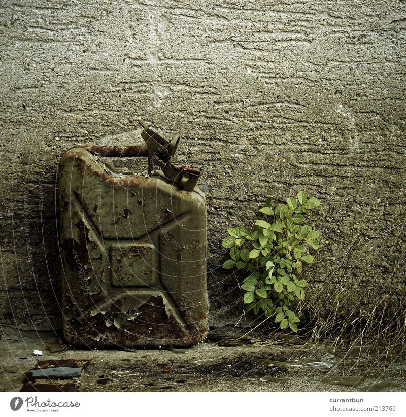 Nature Old Wall (barrier) Concrete Trash Oil Environmental pollution Gasoline Scrap metal Decompose Weed Gas canister
