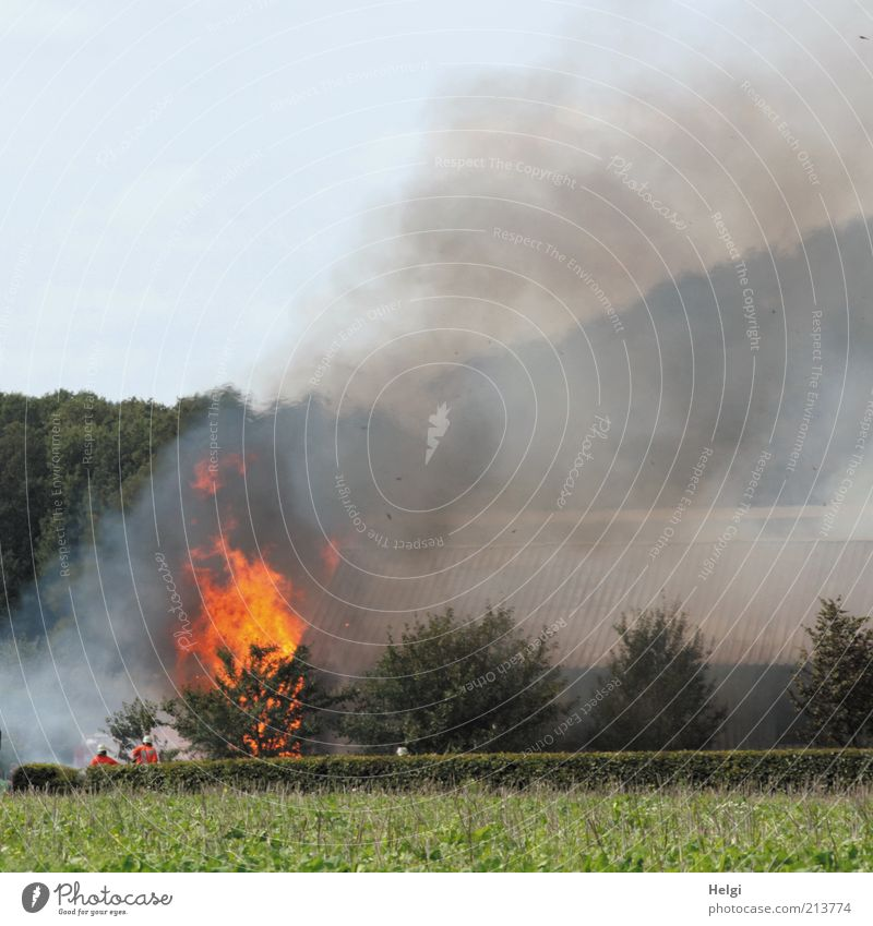 Human being Man Sky Tree Green Plant Summer Yellow Gray Building Field Fear Adults Masculine Fire Dangerous
