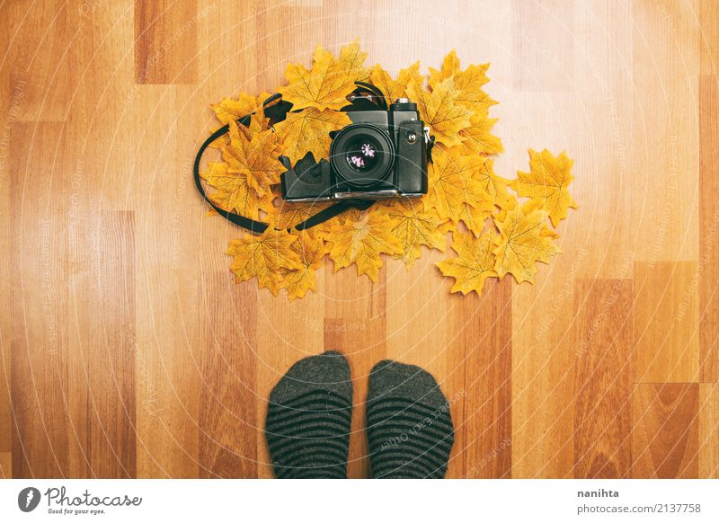 Feet in front of an analog camera and autumn leaves Human being Youth (Young adults) Old Leaf 18 - 30 years Black Adults Lifestyle Autumn Wood Art Brown Orange
