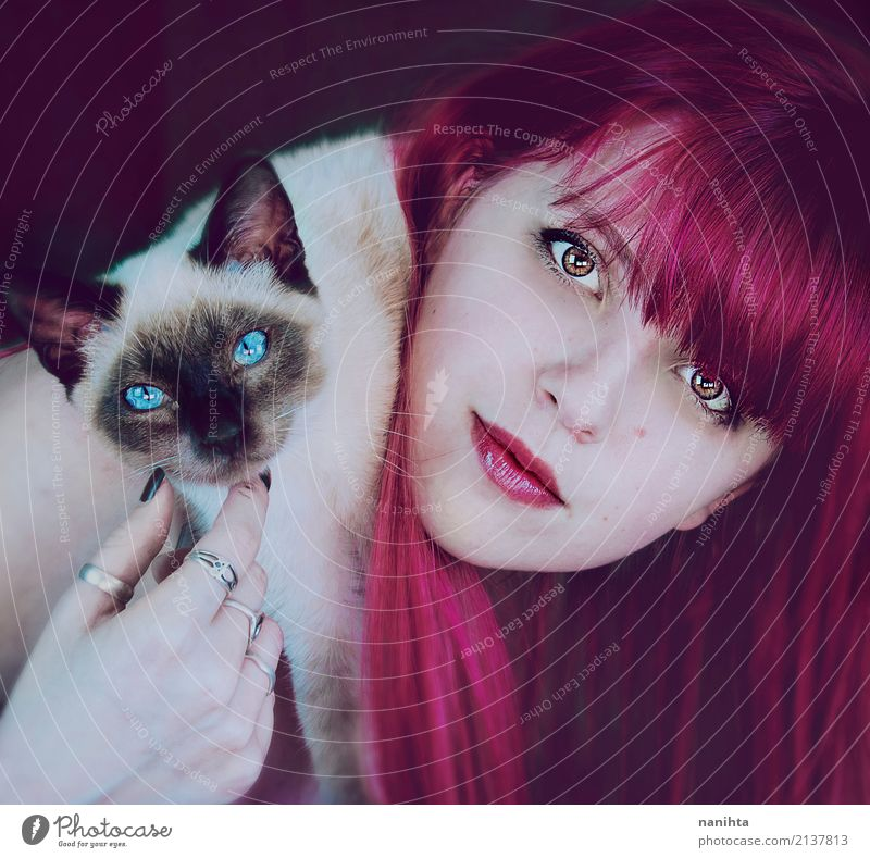 Young woman with her siamese cat Human being Feminine Youth (Young adults) 1 18 - 30 years Adults Ring Red-haired Long-haired Animal Pet Dog Animal face