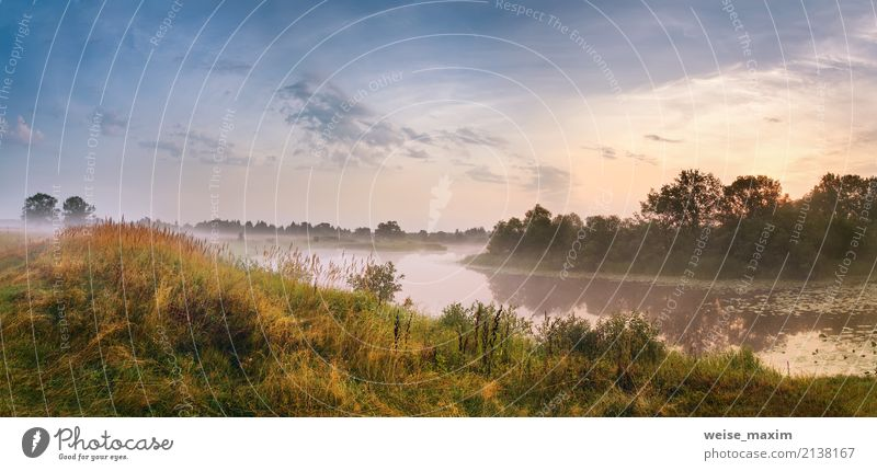 Misty river in the morning. Panorama. Warm summer morning Sky Nature Vacation & Travel Summer Green Tree Landscape Far-off places Beach Forest Warmth Yellow