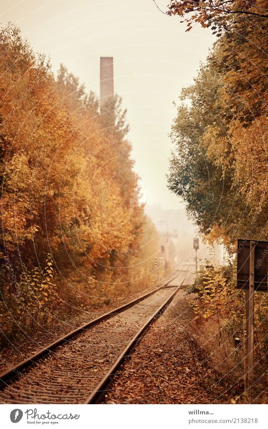An immoral offer Autumn Traffic infrastructure Train travel railway line Rail transport Railroad tracks Target Autumnal Autumnal colours Chimney Tram