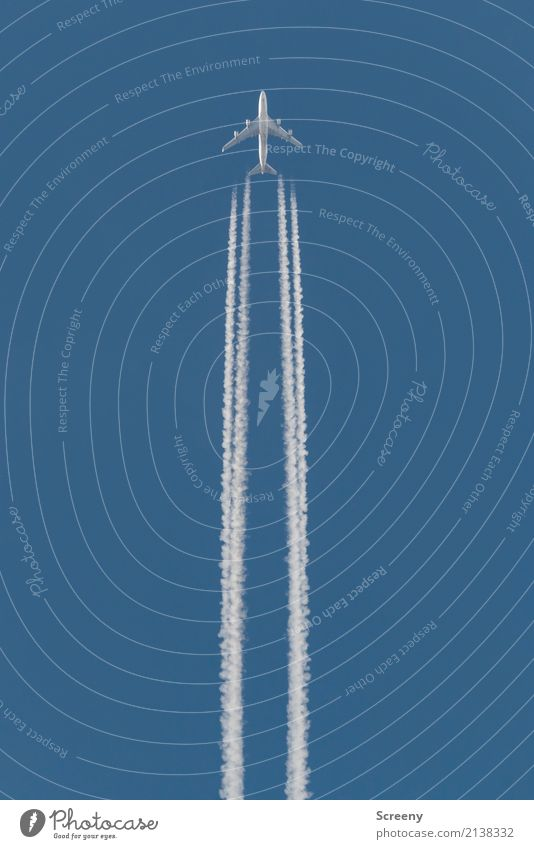 Sky Vacation & Travel Blue White Far-off places Tourism Flying Above Aviation Beautiful weather Speed Tall Airplane Cloudless sky Vapor trail
