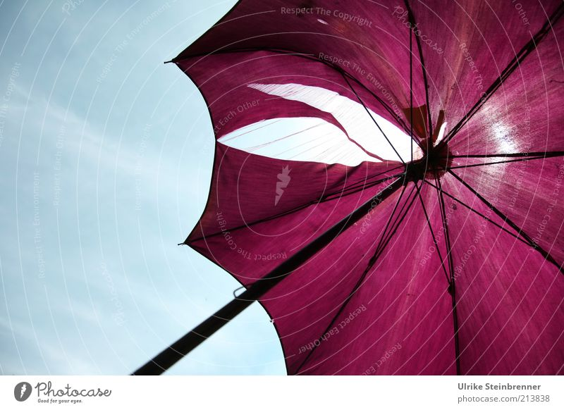 Old Metal Broken Violet Protection Things Cloth Sunshade Hollow Shabby Umbrellas & Shades Crack & Rip & Tear Destruction Rod Vista Weather protection