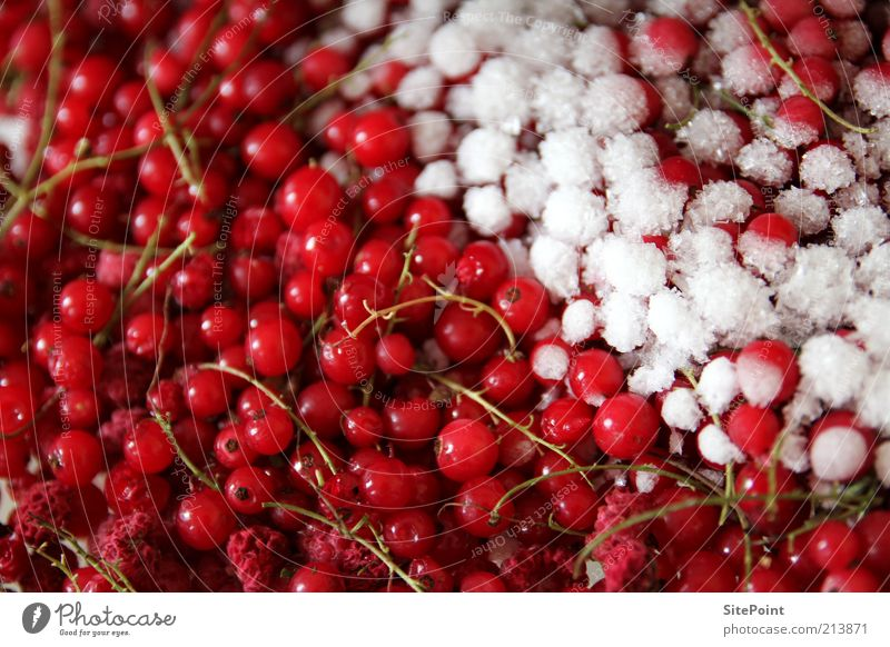 White Red Summer Nutrition Cold Snow Ice Healthy Food Fruit Sweet Round Frozen Delicious Freeze Vitamin