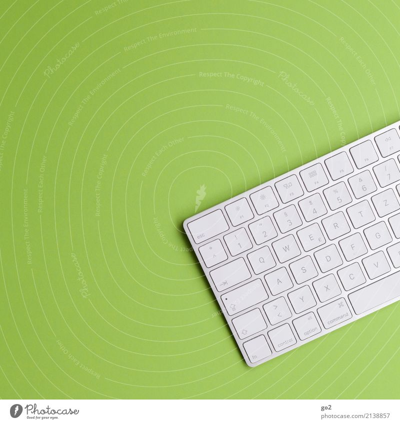 Keyboard on green Education Science & Research Adult Education School Academic studies Work and employment Office work Workplace Media industry