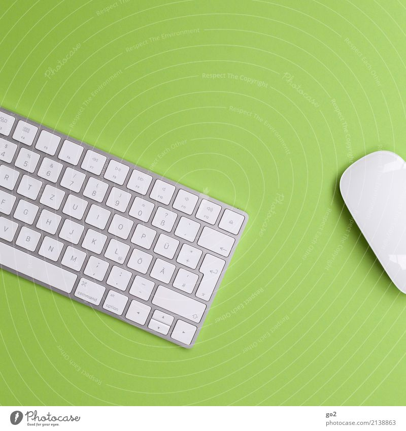 Keyboard and mouse on green background Work and employment Profession Office work Workplace Economy Media industry Advertising Industry Business Career Success