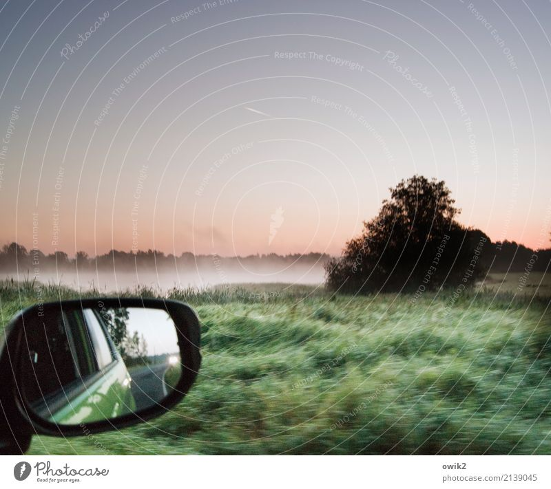 keep an overview Environment Nature Landscape Plant Air Water Cloudless sky Horizon Spring Fog Tree Grass Bushes Lakeside Transport Car Rear view mirror Glass