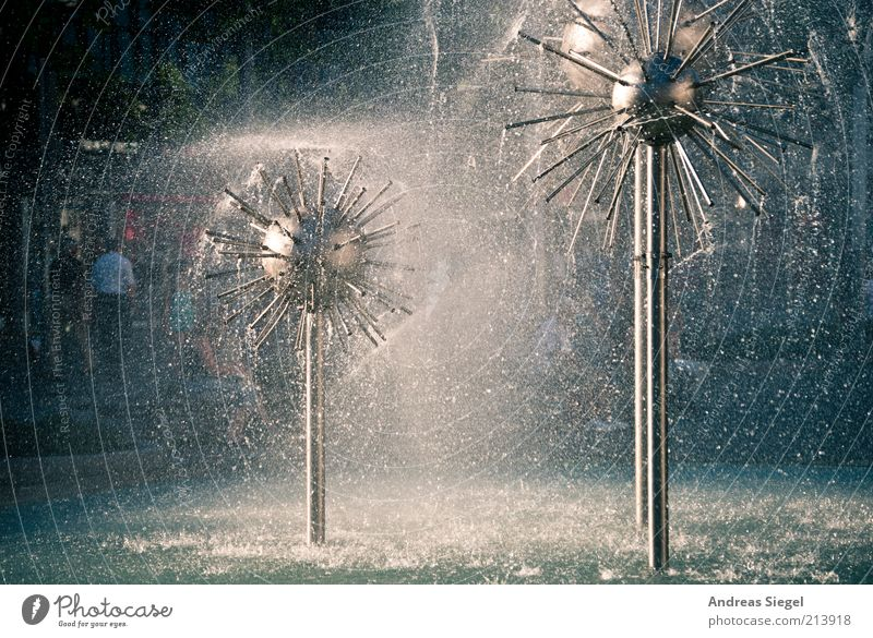Dandelions for your birthday Water Drops of water Dresden Downtown Well Fresh Refreshment Prager Strasse Back-light water feature Inject Bubbling Colour photo