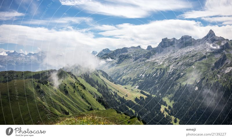 wafts of mist Environment Nature Landscape Summer Beautiful weather Fog Hill Alps Mountain Natural Green Switzerland Tourism Vacation & Travel