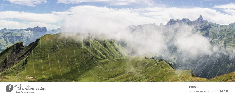 wafts of mist Environment Nature Landscape Summer Autumn Beautiful weather Fog Hill Alps Mountain Natural Green Fog bank Switzerland Tourism Vacation & Travel