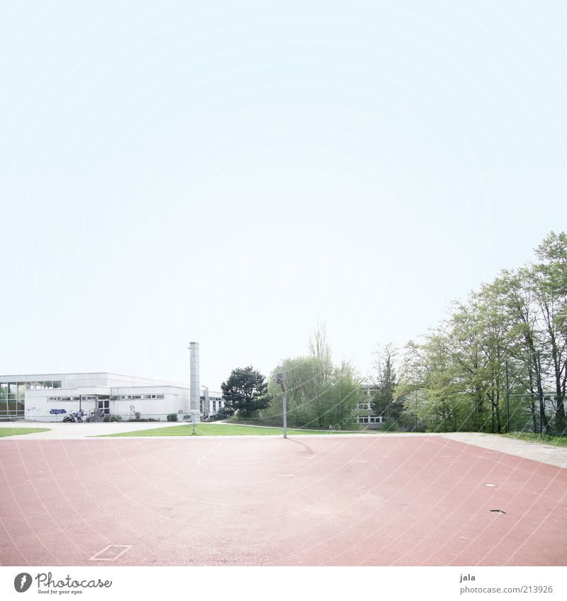 Sky Blue Green White Tree Plant Architecture Building Bright Leisure and hobbies Empty School building Clean Manmade structures Sporting grounds Meeting point