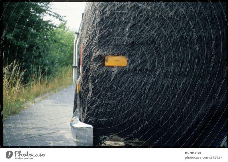 Style Art Design Elegant Transport Crazy Lifestyle Retro Uniqueness Exceptional Pelt Sign Trashy Bus Sculpture