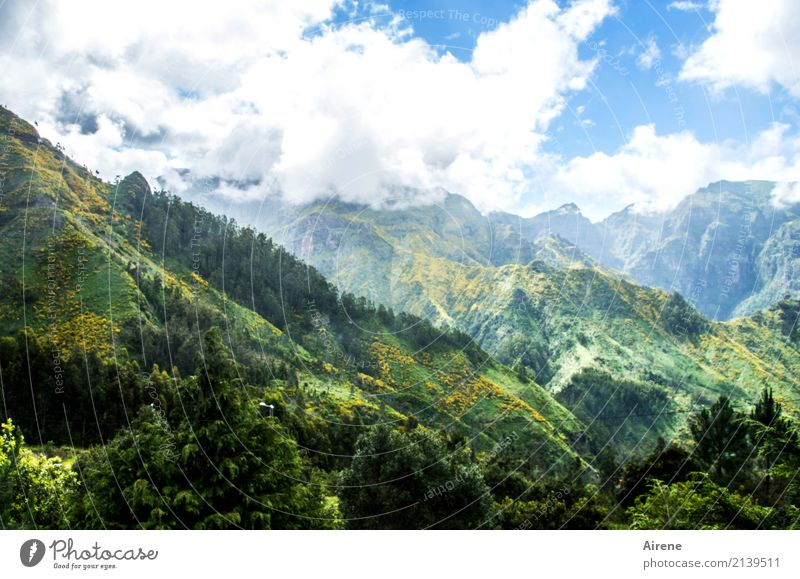 Sky Nature Blue Beautiful Green Landscape Relaxation Clouds Far-off places Mountain Natural Trip Contentment Hiking Beautiful weather Eternity