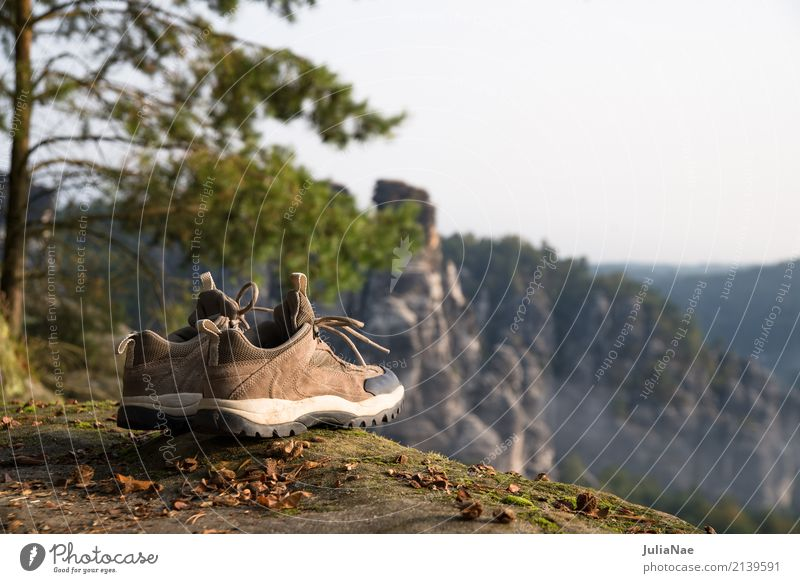 Hiking boots with view outlook Vantage point Tree Mountain Mountaineering Elbsandstone mountains Relaxation Elbsandstein region Rock Going Peak Autumn Landscape