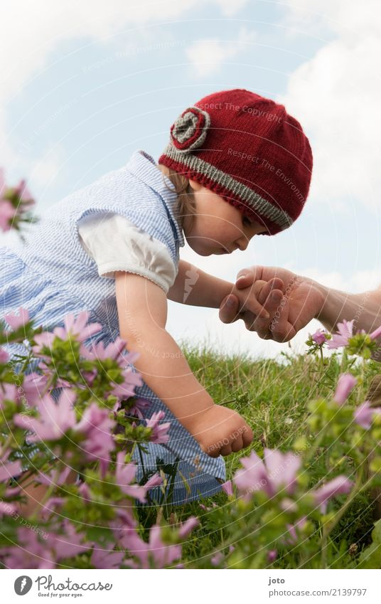 Child Nature Summer Hand Flower Joy Girl Mountain Blossom Meadow Family & Relations Garden Trip Park Growth Infancy