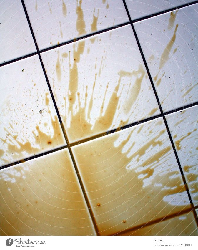 beginning of week Coffee Fluid Brown Tile Spill dropped Diagonal Parallel Floor covering Inject Seam Colour photo Subdued colour Interior shot Detail Pattern