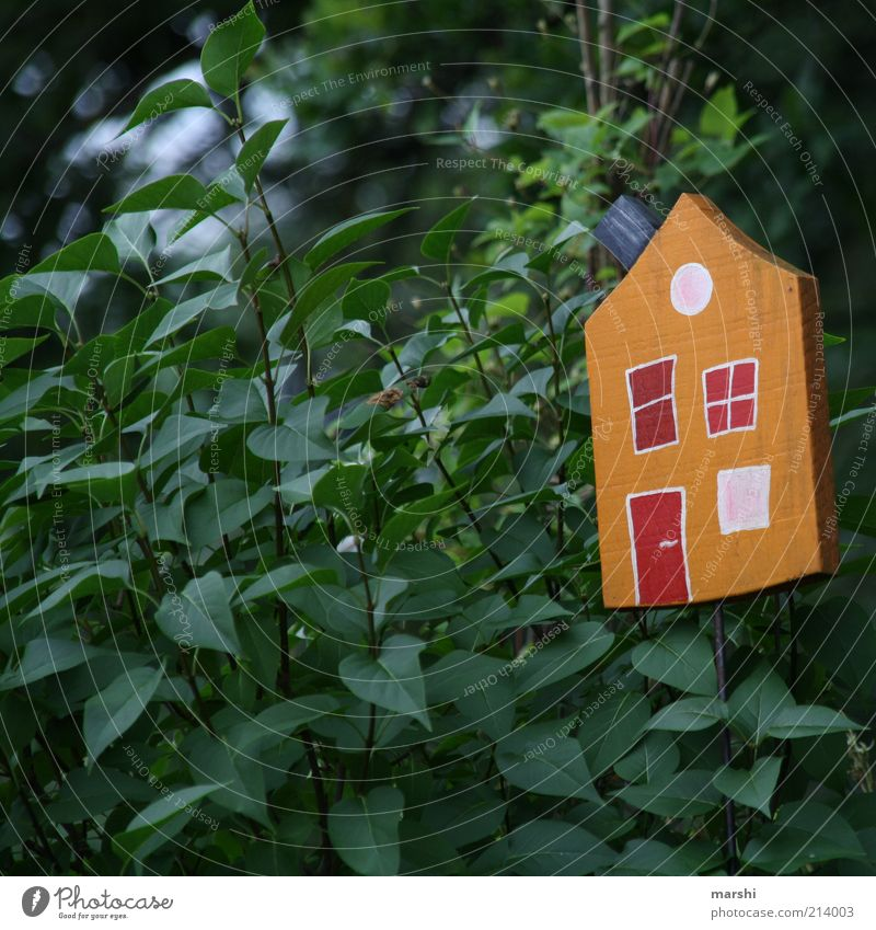 Nature Tree Green Plant Leaf House (Residential Structure) Garden Small Bushes Decoration Living or residing Hut Foliage plant Building Wooden house Birdhouse
