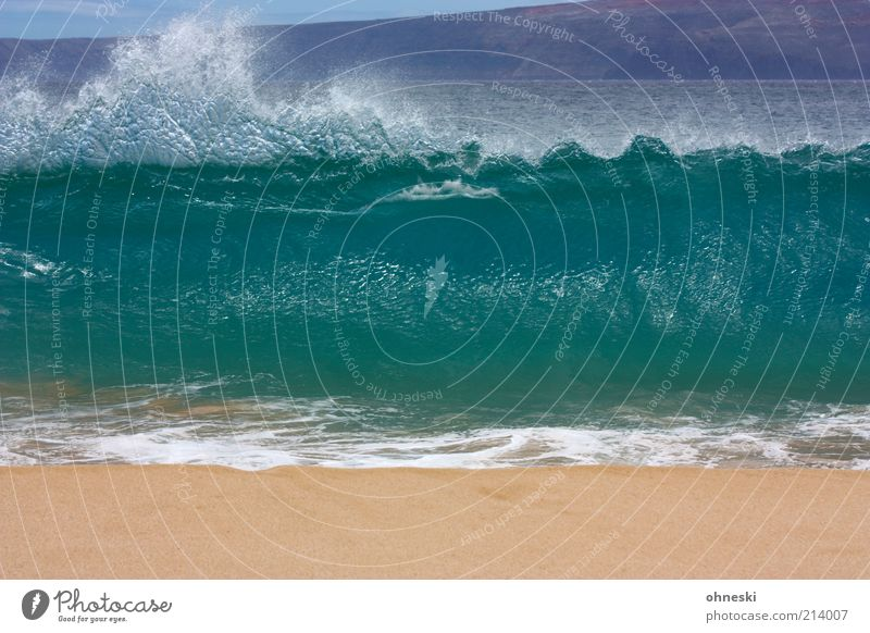 Swash! Elements Water Summer Waves Coast Beach Ocean Pacific Ocean Sand Gigantic Power Splash of water Colour photo Deserted Surf White crest Swell Tall Large