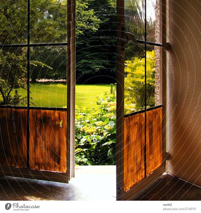 Beautiful Tree Plant Summer Flower Environment Landscape Window Meadow Wall (building) Grass Dye Garden Wall (barrier) Air Park
