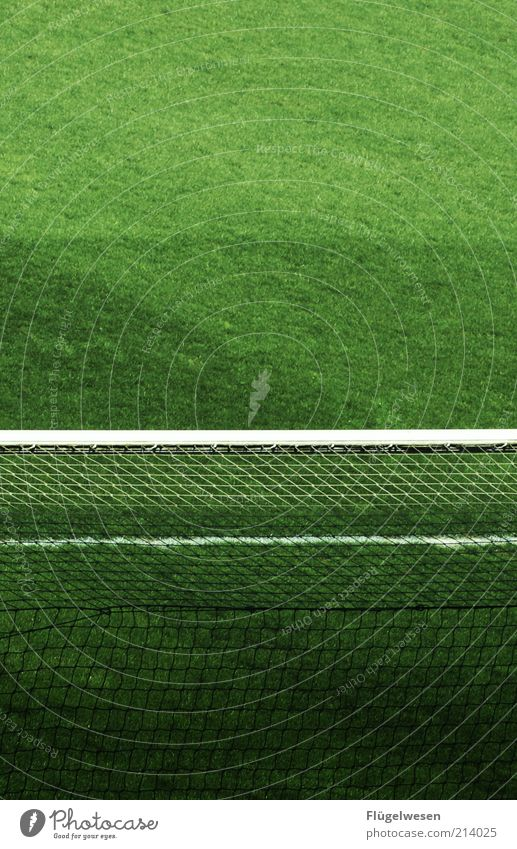 Sports Playing Soccer Lawn Net Leisure and hobbies Goal Wooden board Pole Football pitch Accuracy Soccer Goal Ball sports National league Artificial lawn
