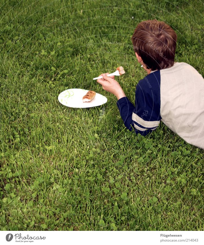 Child Youth (Young adults) Summer Nutrition Meadow Grass Eating Food Crockery Plastic Meal To enjoy Plate Meat Picnic Dinner