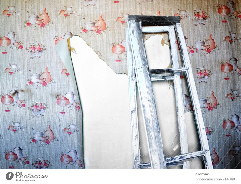 Old Red House (Residential Structure) Wall (building) Window Gray Wall (barrier) Building Kitchen Open Change Transience Wallpaper Decline Craft (trade)