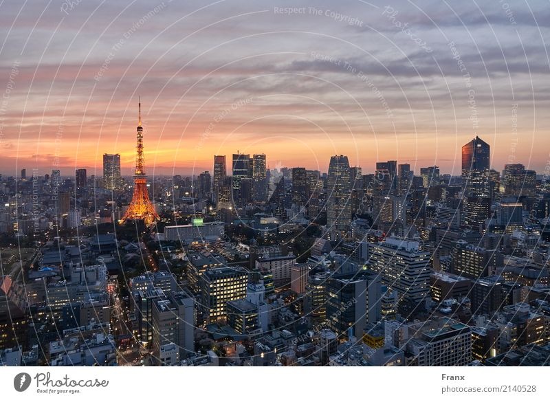 Tokyo Skytree - Sunset Lifestyle Shopping Luxury Vacation & Travel Far-off places City trip House (Residential Structure) Technology Advancement Future
