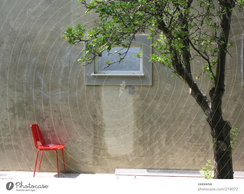 solitary chair Spring Summer Tree Wall (barrier) Wall (building) Facade Terrace Window Design Relaxation Calm Colour photo Exterior shot Morning Concrete wall