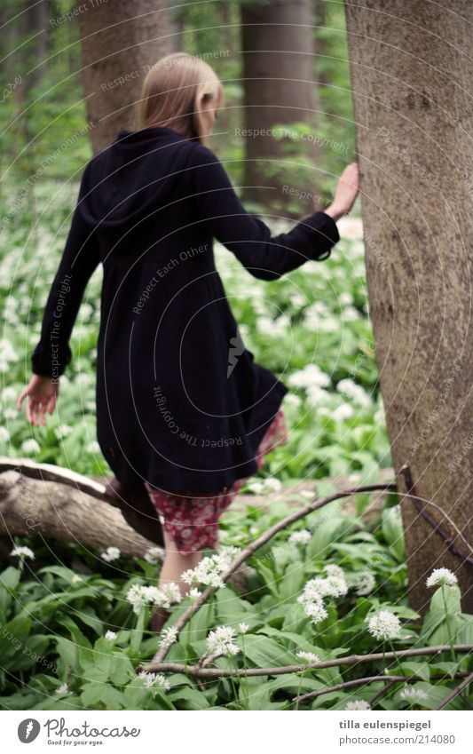 Human being Woman Nature Youth (Young adults) Green Tree Plant Leaf Loneliness Black Forest Adults Environment Cold Feminine Spring