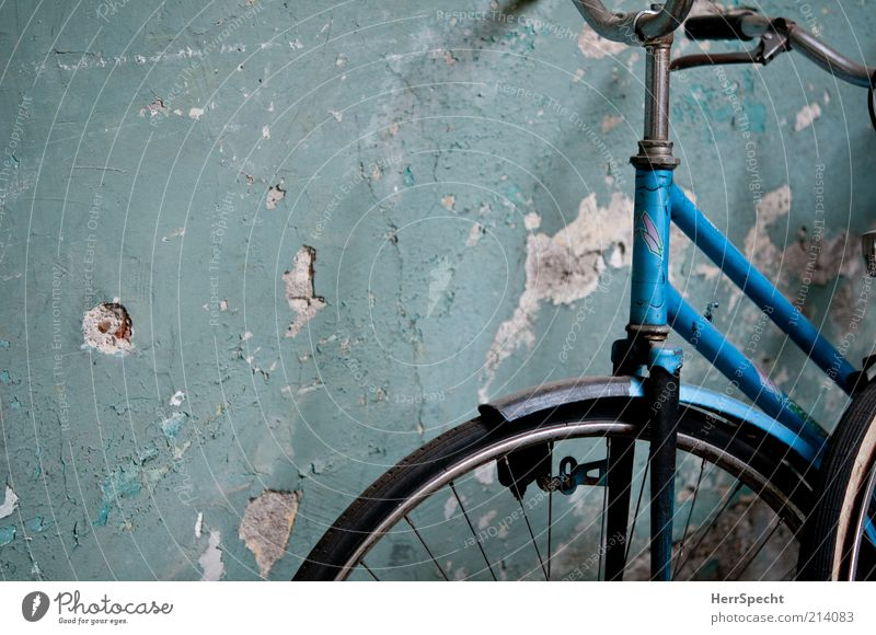 In the backyard Wall (barrier) Wall (building) Bicycle Old Authentic Dirty Broken Trashy Gloomy Blue Green Plaster Hollow Colour Detail Section of image