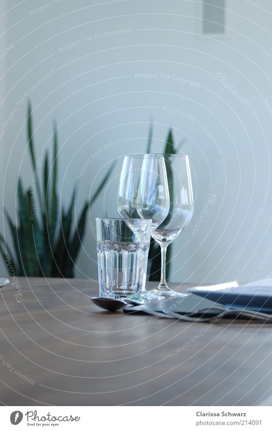 Brown Together Elegant Modern Glass Nutrition Table Drinking water Wine Crockery Luxury Plate Dinner Rich Lunch