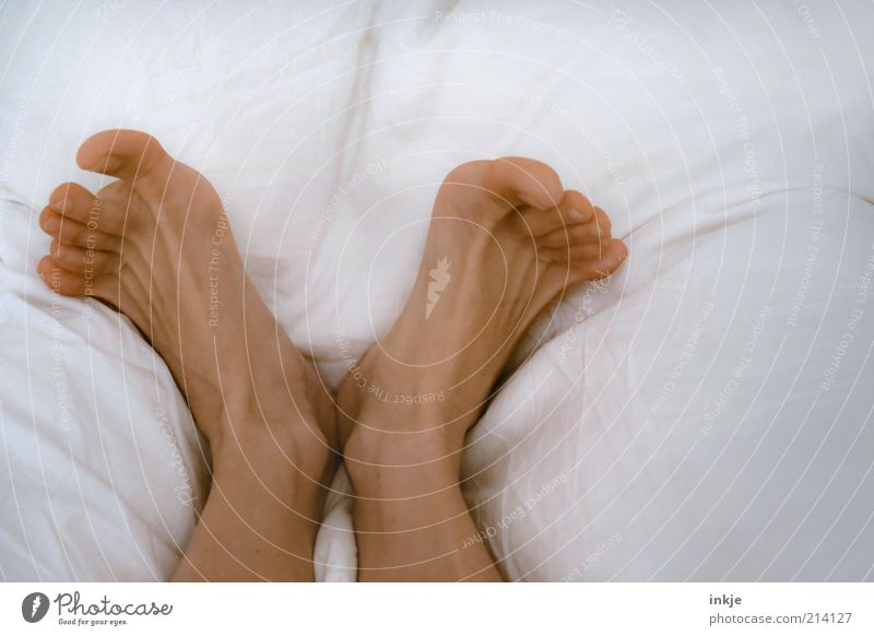 White Relaxation Life Emotions Happy Dream Feet Contentment Lie Fresh Esthetic Happiness Sleep Living or residing Bed Wellness