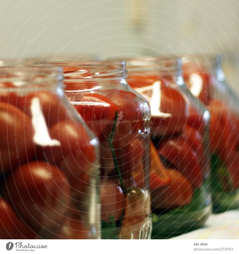 Tomatoes in jars Food Vegetable Nutrition Preserving jar Glass tomato jar Delicacy Conserve pot Stability Self-made To enjoy Supply Canned Colour photo