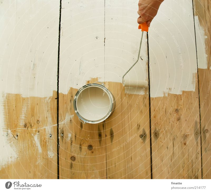 strike Painter Workplace Construction site Craft (trade) Work and employment Bright Handyman Redecorate Colour Wood Floorboards Colour photo Interior shot
