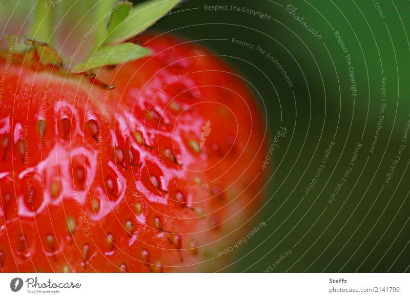 ripening period Food Fruit Dessert Strawberry Nutrition Organic produce Vegetarian diet Vegan diet Healthy Eating Nature Summer Plant Agricultural crop Berries
