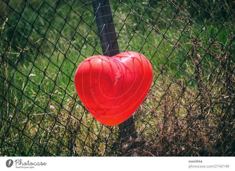 Red heart shaped balloon in a fence Valentine's Day Nature Plant Grass Balloon Fence Metal Heart Authentic Simple Happiness Healthy Beautiful Cute Green Black