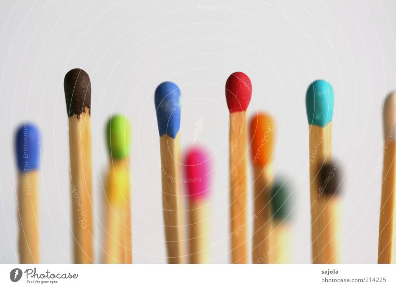 Wood Multicoloured Multiple Stand Team Society Many Attachment Mixture Difference Match Teamwork Vertical Isolated Image